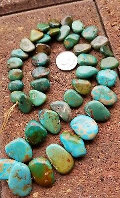 "GREEN BLUE OLD STOCK ROYSTON FLAT BEADS 16"" RARE AMERICAN Turquoise LAST ONE"