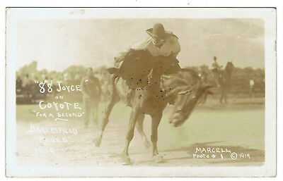 """101 Ranch Ponca City Okla. marketed Bakersfield 1919 Rodeo """"88 Joyce"""" on Coyote"""