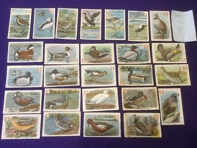 Dwight Soda Bird Cards: 27 Out Of 30 Set. Series 4. New York. Copyright 1924.