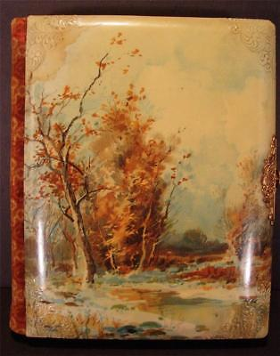 Antique Victorian Celluloid Velvet Photo Picture Album Full 24 Cabinet Cards