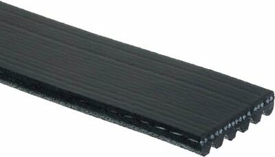 Serpentine Belt-Century Series Premium OE Micro-V Belt Gates K060995