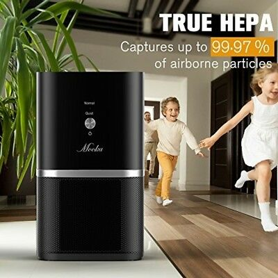 Air Purifier Desktop Air Filtration with True HEPA Filter Compact Home Air Clean
