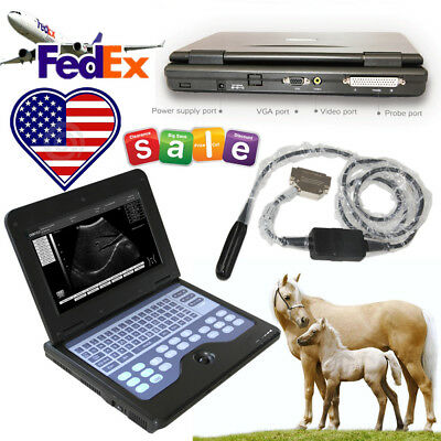 Laptop/Portable Digital Veterinary Ultrasound Scanner Machine, Rectal probe 7.5M
