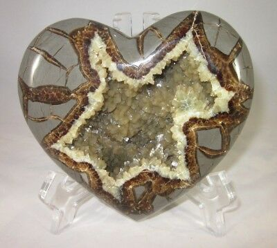 Top Quality Hollow Septarian Nodule Heart from Utah