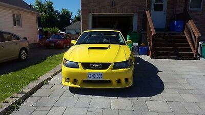 Ford: Mustang 2001 Mustang Saleen