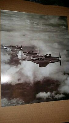 Photo P51 Mustangs in flight 8x10 inch