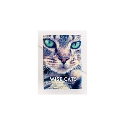 Wise Cats - Affirmations