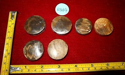 r464 Pleistocene FOSSIL bark jewelry round coin inlay pendant 1mm mammoth hair