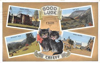 Good Luck from Crieff, James Square Sma Glen Monzie Castle Macrosty Park