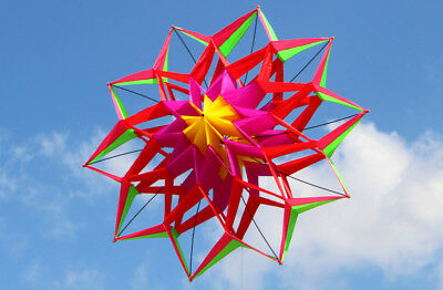 3D Colorful Lotus Flower Kite Single Line Outdoor Toy Flying for Kids Sport