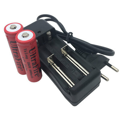 2x 18650 6000mAh Battery 3.7V-4.2V Li-ion Rechargeable Batteries and Charger EU