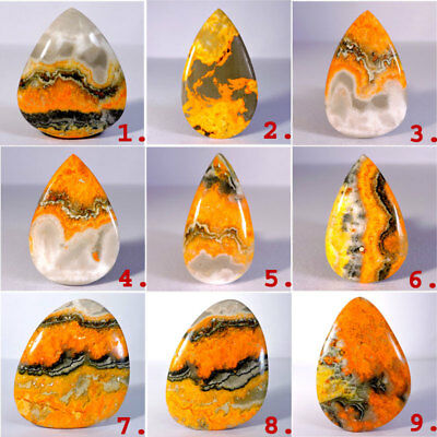 Natural Indonesian Bumble Bee  Jasper And Fossil Coral Cabochon Loose Gemstones