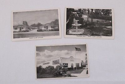 Lot of 3 Black and White Post Cards Florida Scenery St. Petersburg