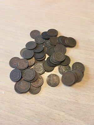 INDIAN HEAD Pennies.  Roll of 50 circulated.