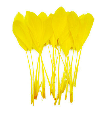"""20 pcs Stripped Coque Feathers Millinery and Crafts 5-7"""" yellow"""