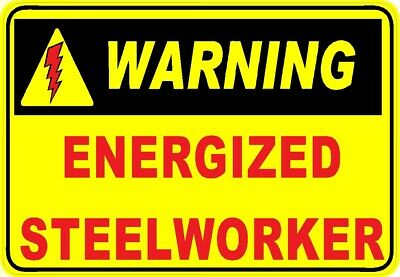 CSW-3 Steelworkers union pride on shield sticker
