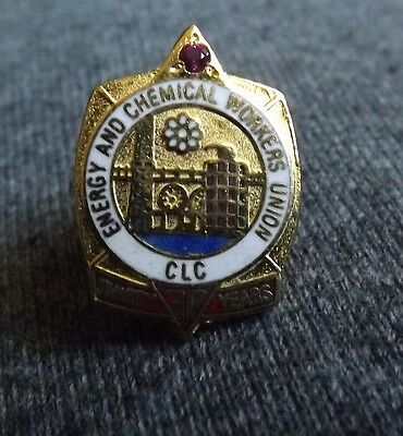 Energy and Chemical Workers Union 30 Year pin. Very Nice Condition