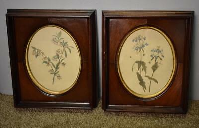 19th Century Antique Victorian Mahogany wood Frame / Print Pictures