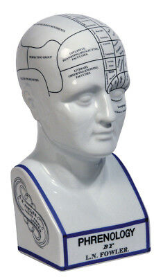 Authentic Models Phrenology Head - Phrenology Kopf