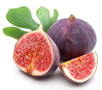50Pc Figs Fruit Tree Seeds Edible Sweet Exotic Rare Potted Bonsai Plants