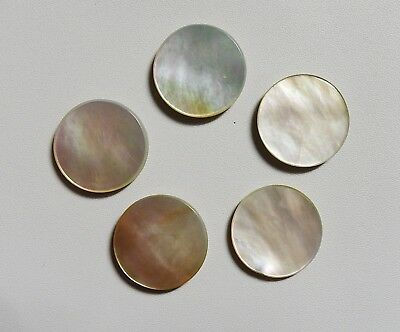 66.00 Ct. Mother Of Pearl Round Flat Cabochon 5 pcs 20X20X3 Gemstone India
