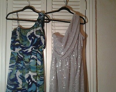 size 12 Valerie Bertanelli 2 dress lot