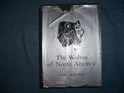 THE WOLVES OF NORTH AMERICA by Young and Goldman/1st Ed/HCDJ/Nature/Wildlife