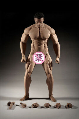【USA PRIORITY SHIPPING】 TBLeague PHICEN 1//6 STRONG MUSCULAR Male SEAMLESS Body