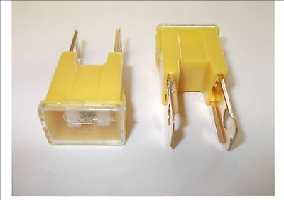 2 X PAL JAPANESE MALE TYPE M SLOW BLOW FUSE 60A