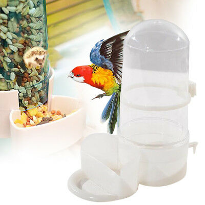 Pet Bird Automatic Drinker Feeder Water Dispenser Clip Large Parrot Hedgeho