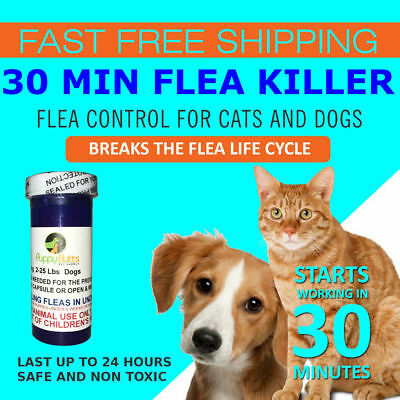 100 CAPSULES Flea Killer For CATS and DOGS 2-25 Lbs. 12 Mg Starts Working Fast!