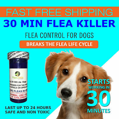 30 CAPSULES Flea Killer DOGS 25- 125 Lbs. 57 mg Quick, Fast Results