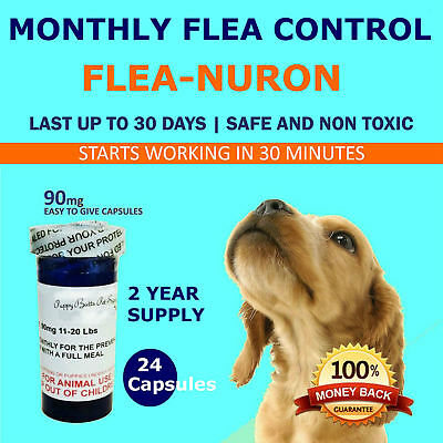MONTHLY Flea Control 2 YEAR SUPPLY For DOGS 90-135 Lbs. 615 Mg PB 24 Capsules