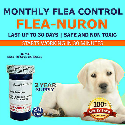 MONTHLY Flea Control 2 YEAR SUPPLY For Dogs 2-10 Lbs. 45 Mg PB 24 Capsules