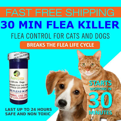 24 CAPSULES Flea Killer For CATS and DOGS 2-25 Lbs. 12 Mg
