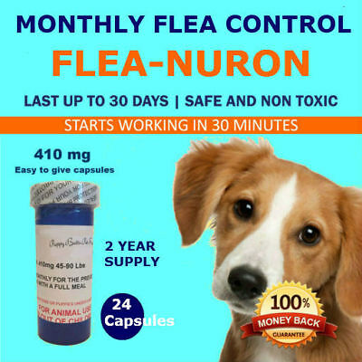 MONTHLY Flea Control 2 YEAR SUPPLY For Dogs 45-90 Lbs. 410 Mg PB 24 Capsules