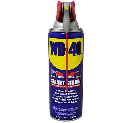 XLarge WD 40 DIVERSION CASH SAFE SECRET CAN HIDDEN HIDE STASH KEYS 12ozcan(s384)