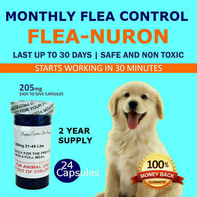 2 YEAR SUPPLY Monthly Flea Control For Dogs 21-45 Lbs. 24 Capsules 205 Mg. PB