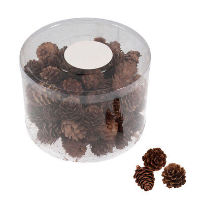 Tub of 100 x Small Natural Pine Cones