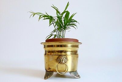 """Antique/Vintage Small 5"""" Solid Brass Lion Head Handles Footed Planter Boho"""