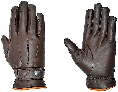(Large, Brown - Chocolate/Light Brown) - Riders Trend Adults Horse Riding