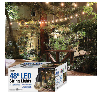 Feit 48ft 24 LED RGB Outdoor Weatherproof Color Changing String Light Set Remote