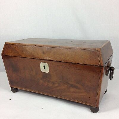 Fine Antique George III Mahogany Tea Caddy Sarcophagus Form Boxwood Inlay 31cm