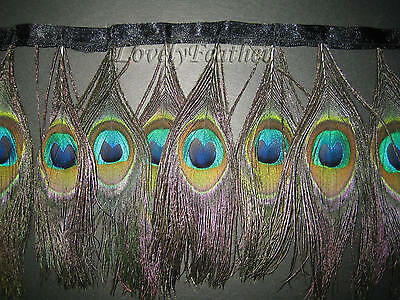 Peacock eye feather fringe natural color 2 yards trim
