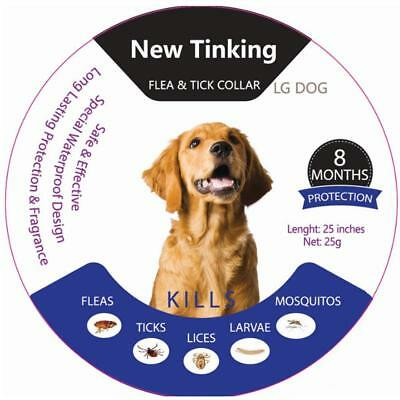 Flea and Tick Collar for Dogs and Cats Plant Pest Removing Beautiful and Firm