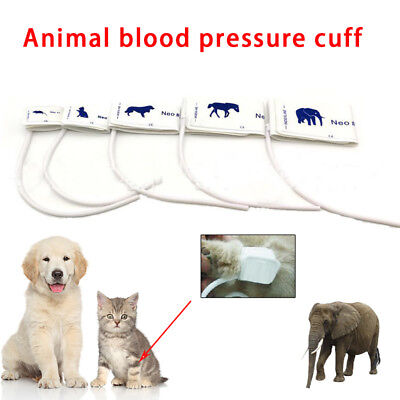 Animals Pet Use Disposable NIBP Blood Pressure Cuff for Cat Dog Veterinary
