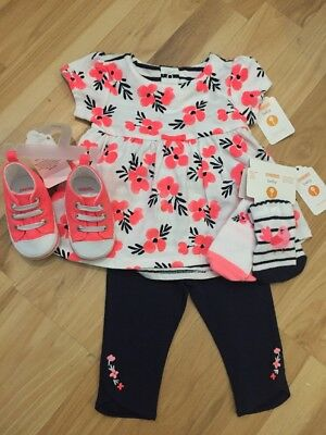 NWT Gymboree Baby Girl Bright Pink Navy Bird Flower FALL 5-piece Shoe SET 3 6