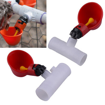 4 Pcs Poultry Water Drinking Cups Automatic Drinker Chicken New
