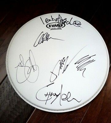 Lamb Of God Band Signed X5 Evans 12 Inch Drumhead Randy Blythe Chris Adler!!!