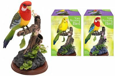 New Voice Recording Parrot Bird Talk Back Novelty Gift Talking Recorder Gift